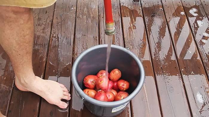 12 способов легко почистить молодую картошку