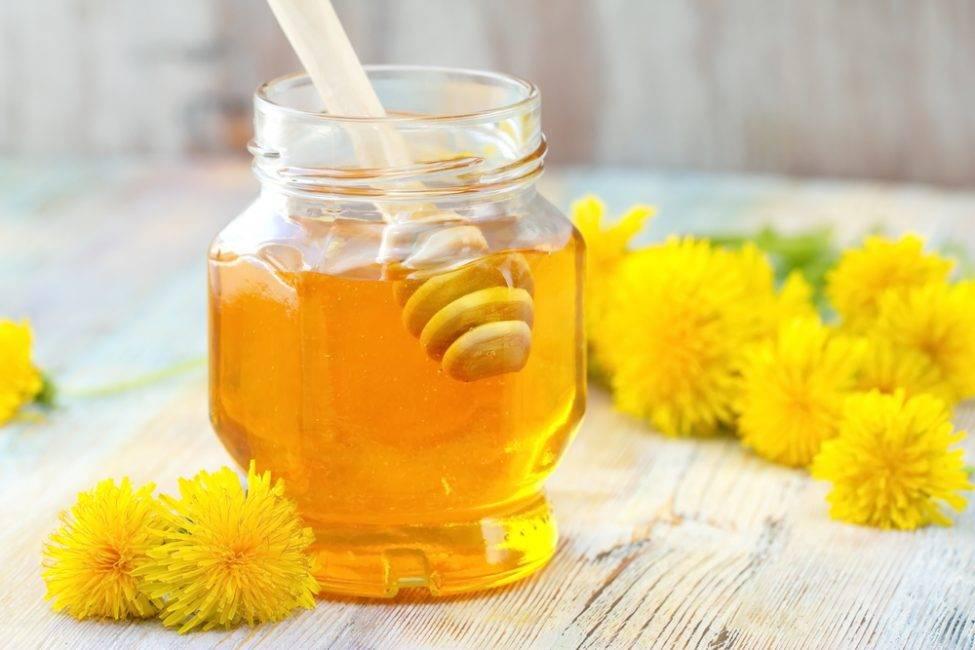 Мед из одуванчиков: польза, вред, вкусные рецепты в домашних условиях