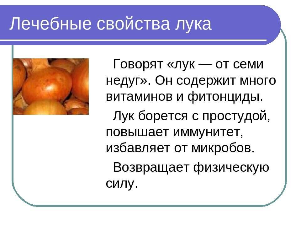 Чем полезен лук для человеческого организма?