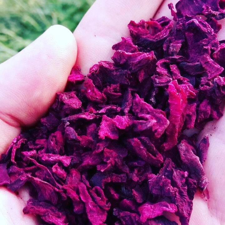 До жевательной резинки (вяленая свекла). сушеная свекла – рецепт с пошаговыми фото на зиму по приготовлению в духовке
