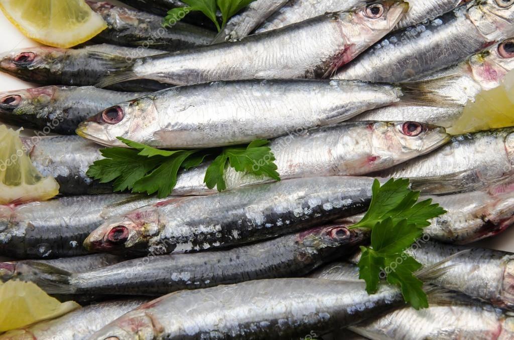 Сардины: польза и вред консервы, общие характеристики продукта