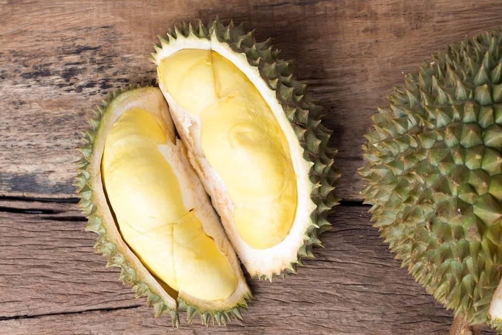 Дуриан — полезные свойства и противопоказания, состав, калорийность. как правильно есть дуриан, рецепты. выращивание в домашних условиях