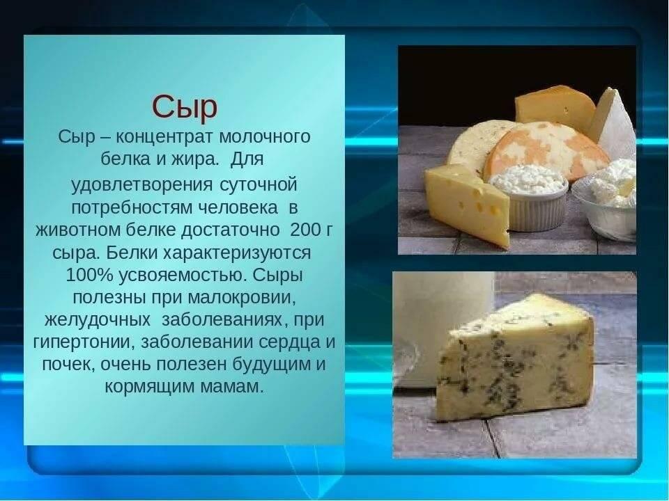Сыр пармезан: что это такое и как его едят? цена, калорийность, рецепт