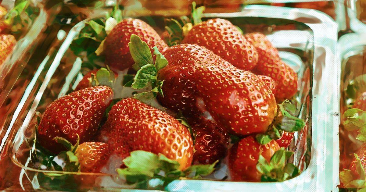 Полезные свойства земляники. ягоды, листья: лечебные свойства