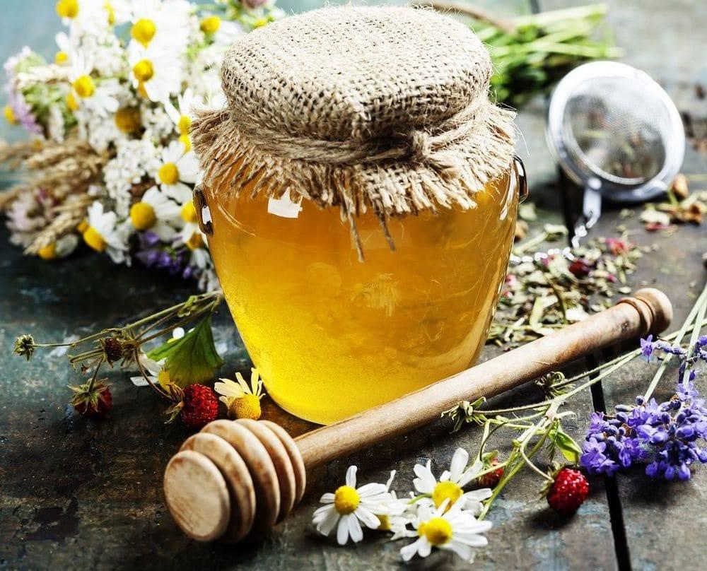 Весенний или майский мед: особенности сорта и полезные свойства пчелиного продукта