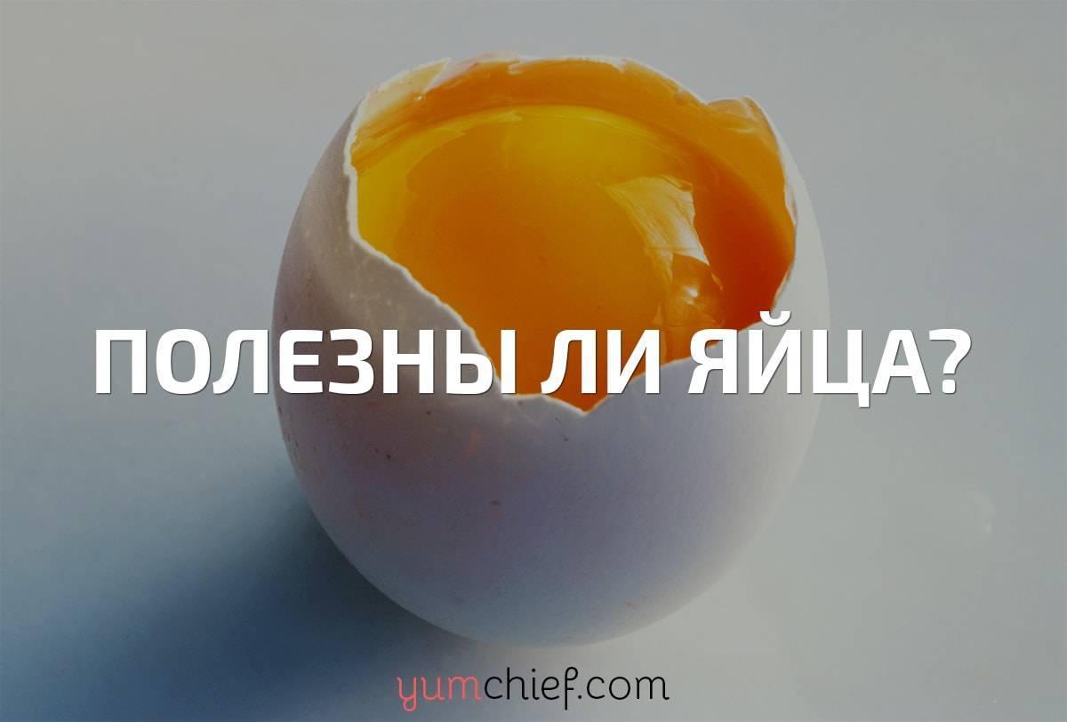 Какие яйца полезнее вареные или жареные?