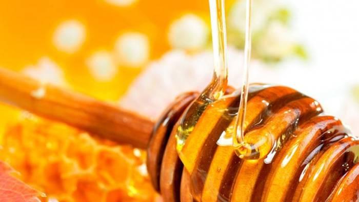 Чем полезен и вреден мед? распространенные методы применения и противопоказания