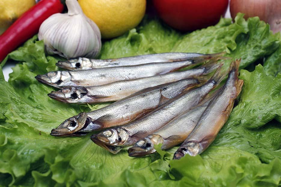 Корюшка вяленая чем полезна. рыба корюшка польза и вред. при выборе вяленой рыбки нужно быть внимательным