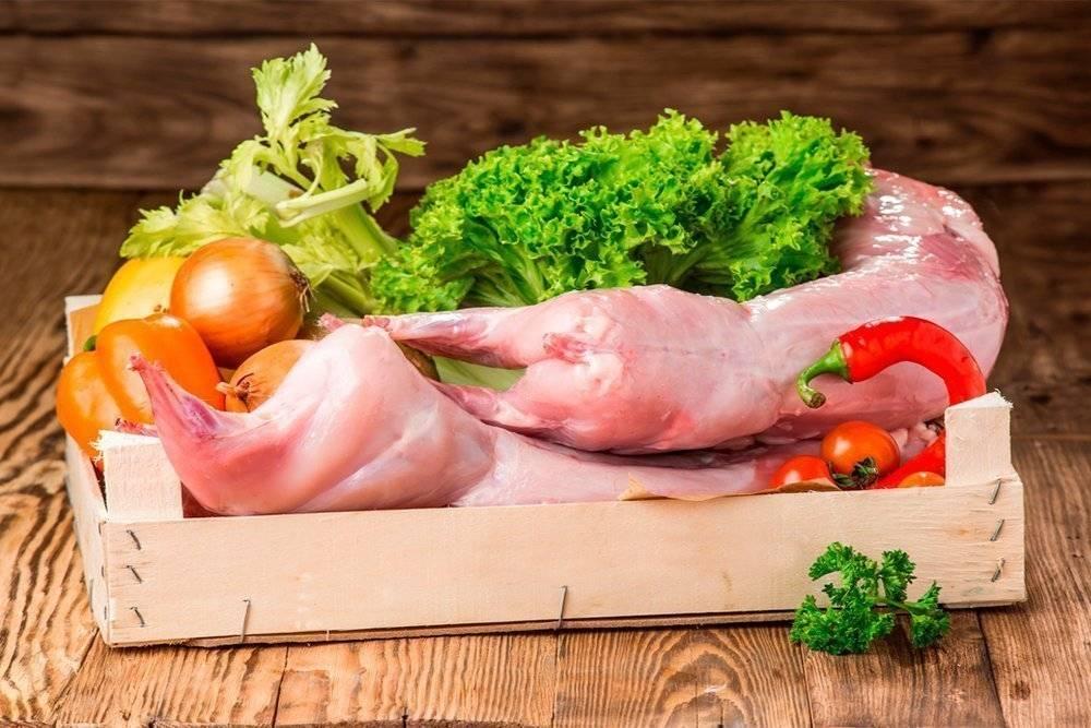 Польза мяса кролика для организма человека