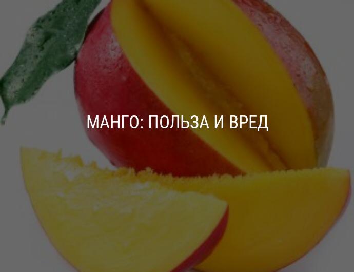 Манго: польза и вред для организма, химический состав, калорийность