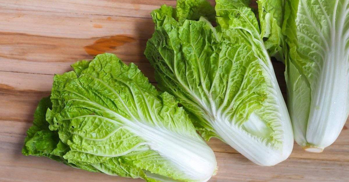 Листовой салат, польза и вред для здоровья человека