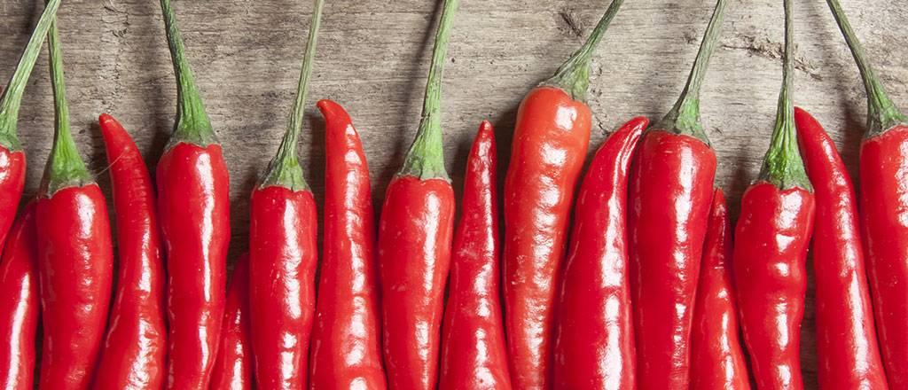 Польза и вред красного перца: применяем без вреда для здоровья