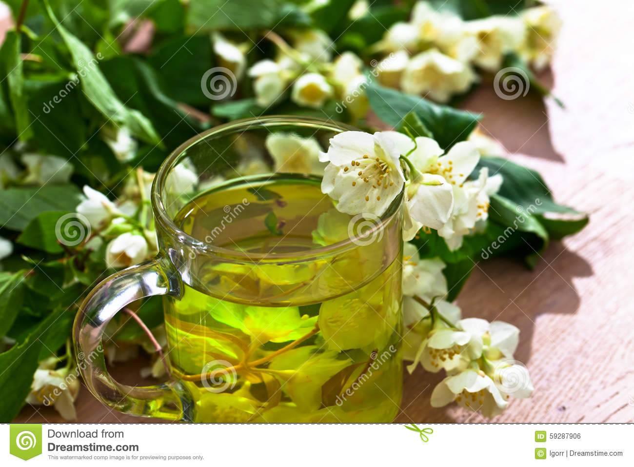 Зеленый чай с жасмином – польза и вред ароматного напитка