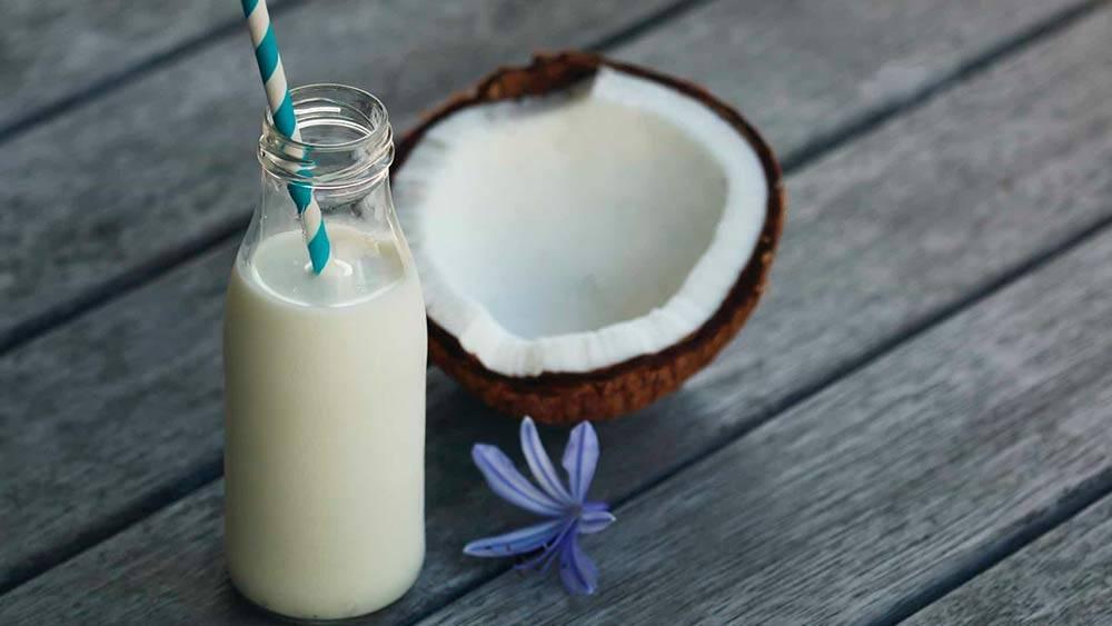 Польза и вред кокосового молока для человека
