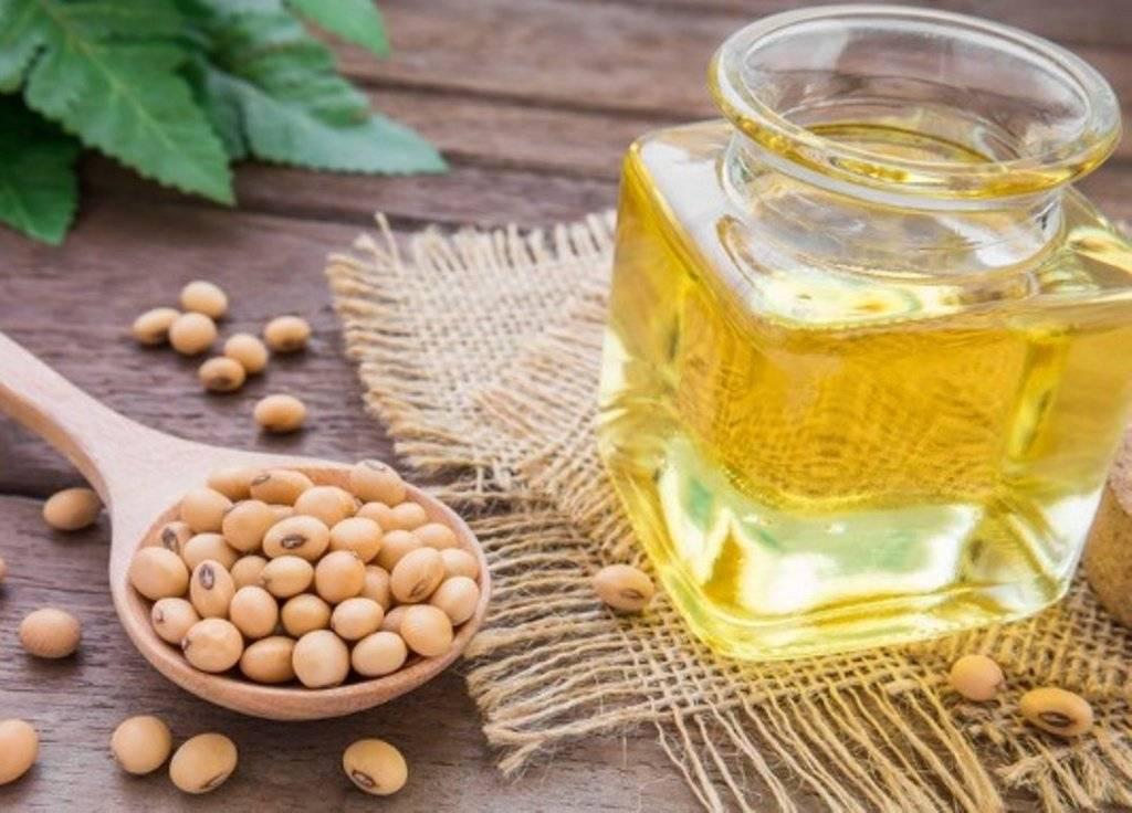 Польза и вред соевого масла. свойства и применение соевого масла