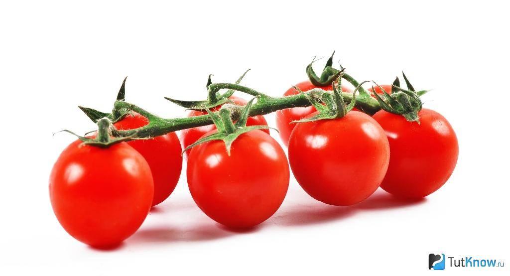 Помидоры черри: польза и вред для здоровья, норма потребления в день