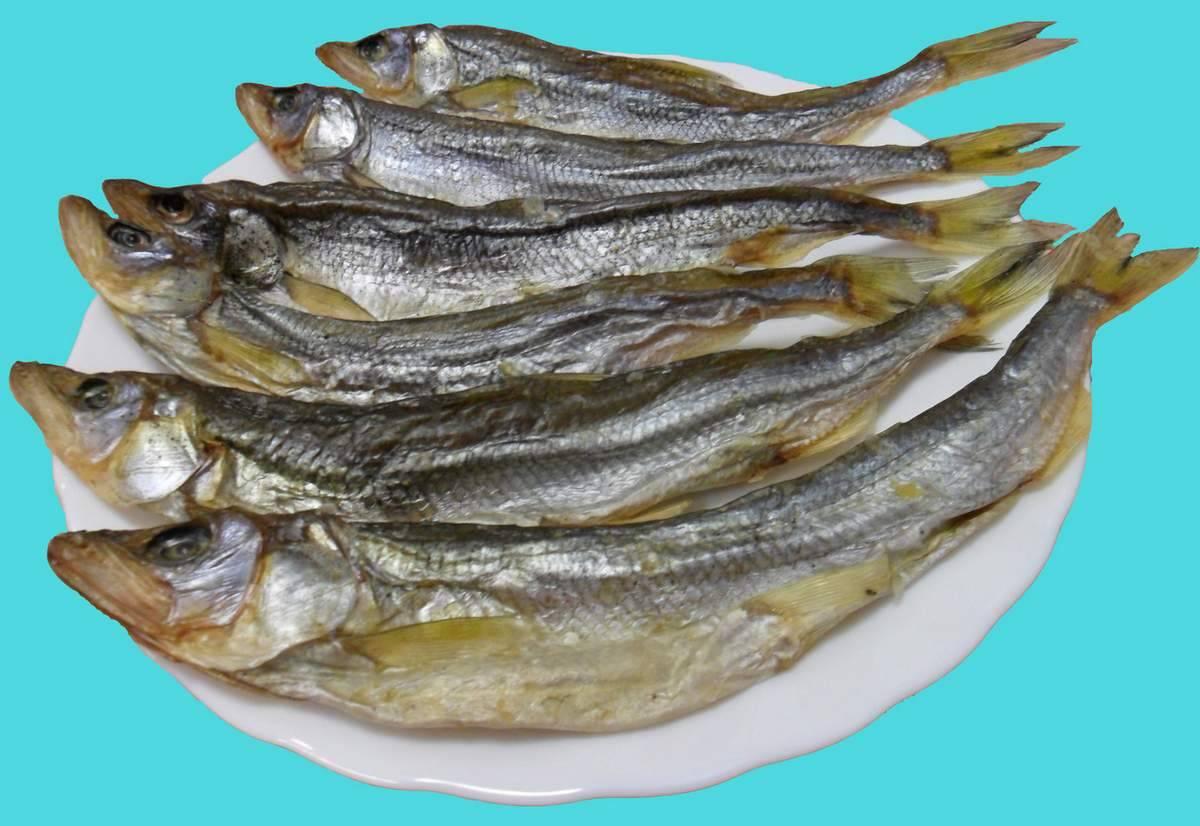 Рыба вяленая польза и вред