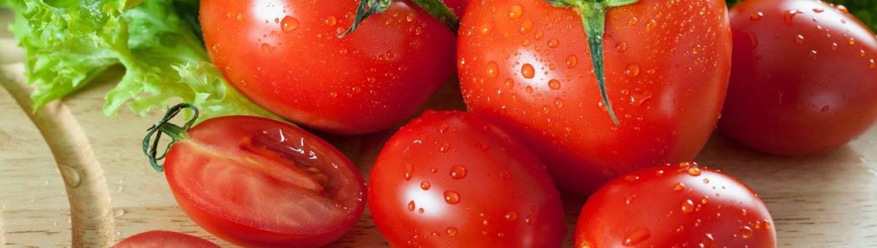 В чем польза и вред свежих томатов и всех его производных при беременности: можно ли пить сок, кушать соленые и бочковые томаты