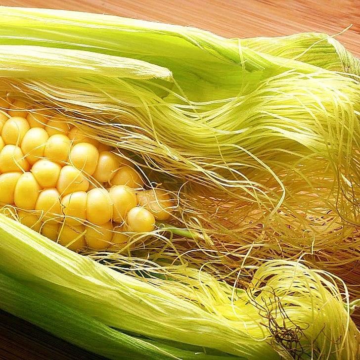 Известные лечебные свойства кукурузных рыльцев и противопоказания