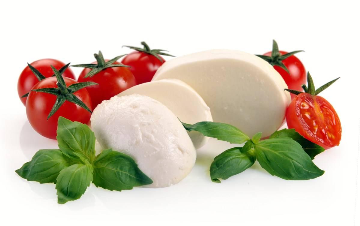 Сыр моцарелла, состав, польза и вред, моцарелла в домашних условиях
