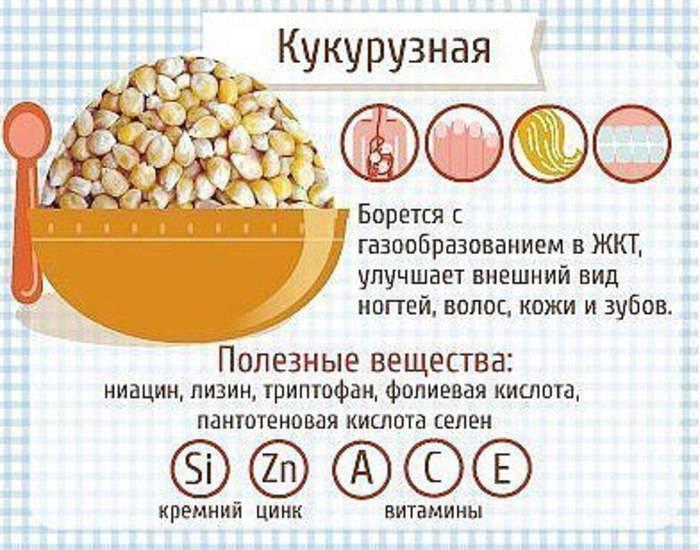 Кукурузная каша польза и вред для здоровья человека