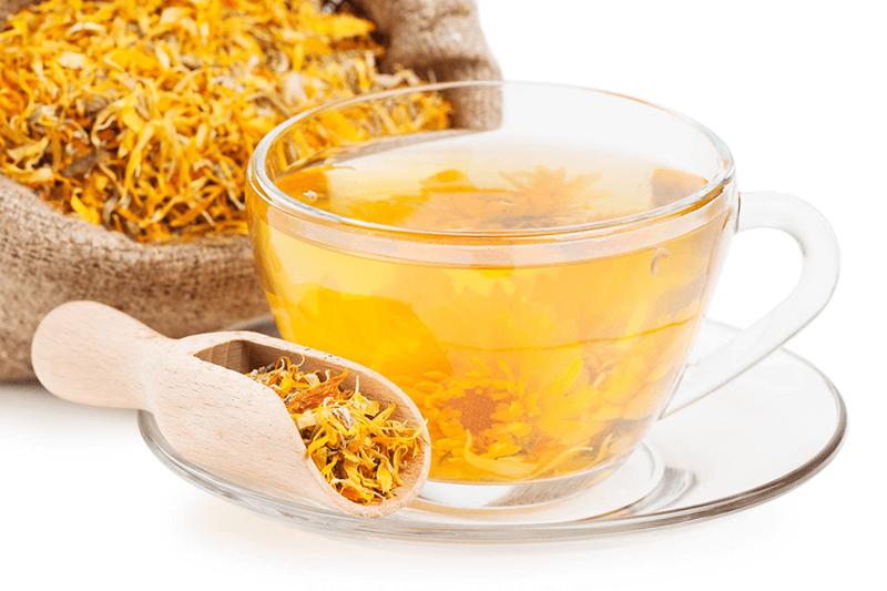Чай из календулы — польза и вред для женщин и мужчин