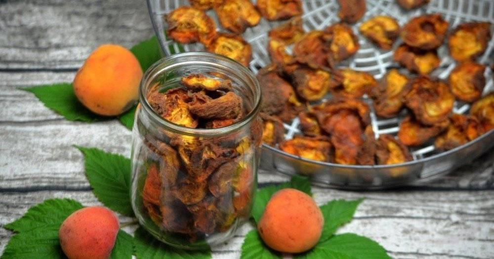 Как сушить абрикосы на курагу в домашних условиях