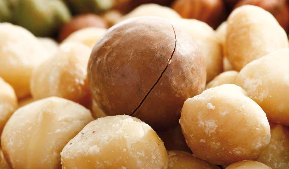 Чем полезны орехи макадамия для женщин?