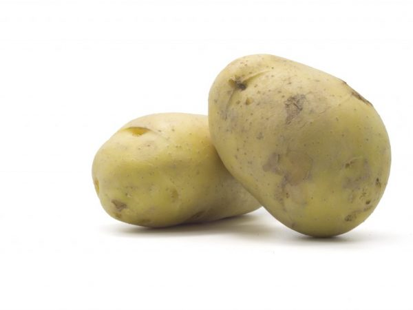 Можно ли готовить зеленую картошку