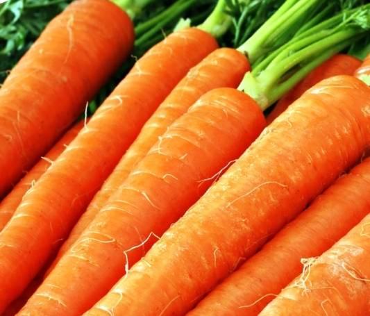 Морковная ботва: польза и вред, ее состав, применение в народной медицине и косметологии