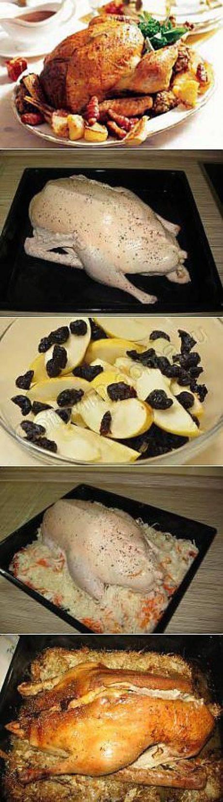 Гусь в духовке – как приготовить вкусного гуся, чтобы он был мягким и сочным