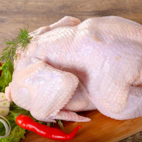 Как разморозить курицу правильно и быстро? как быстро разморозить курицу. способы и рекомендации