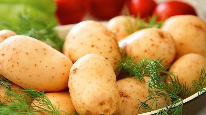 Польза и вред ботвы картофеля